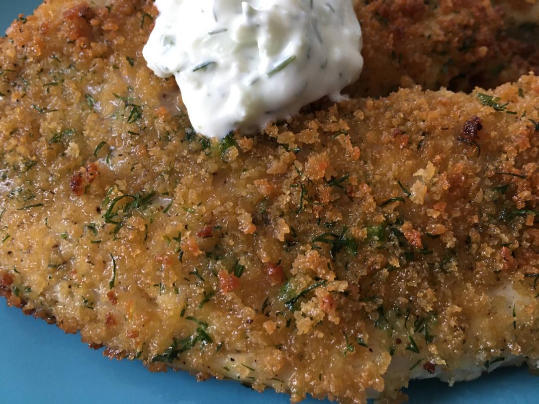 pan-fried panko-crusted tilapia